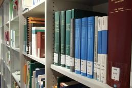 Control llibres RDIF